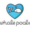 Whale Pools's profile photo