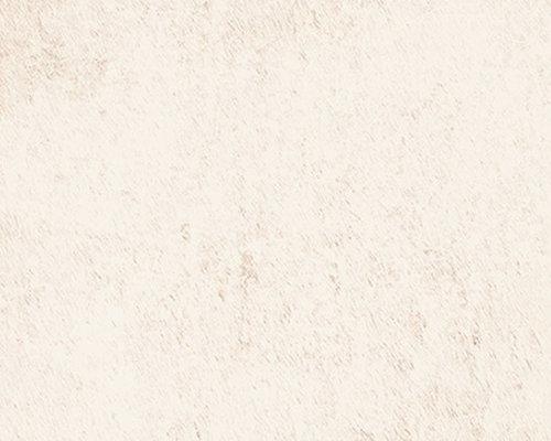 Alchimia Ivory - Wall & Floor Tiles