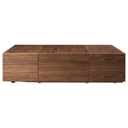 Contemporary Coffee Tables by Vig Furniture Inc.