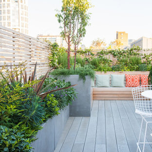 Inspiration for a contemporary roof terrace and balcony in London with no cover.