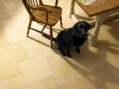 Transitional Wall And Floor Tile by harveysnaturalflooring.co.uk