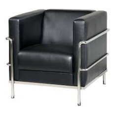 Leifur Contemporary Style Black Stainless Steel Frame Chair