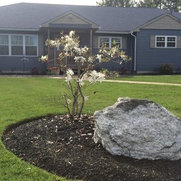 Foto de Willie C and Sons Landscaping LLC