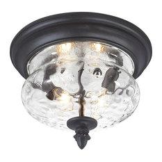 Ardmore 2 Light Outdoor Ceiling Light in Black