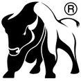 Profilbild von Bison Natural Authentic