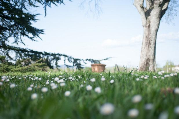 Conseils de pro pour r ussir les photos de votre jardin for Conseil pour le jardin