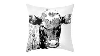 Black Cow Pillow Cover, 18x18