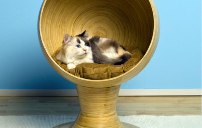 Furniture 12 Stylish Solutions For Ugly Cat Furniture