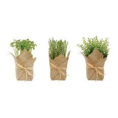 Burlap Wrapped Artificial Herb Plants, 3 Piece Set