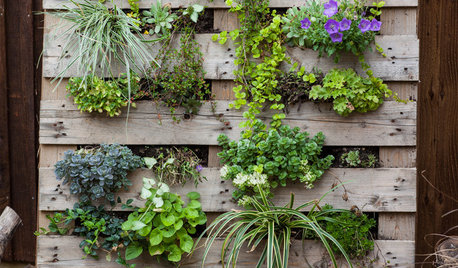 How to Make a Pallet Planter for Your Patio, Balcony or Wall