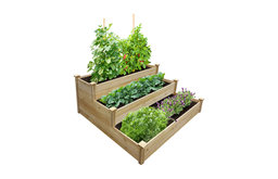 "Greenes 3-Tiered Value Cedar Raised Garden Bed, 4'x4'x21"""