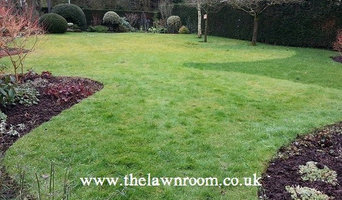Lawn restoration Mobberely