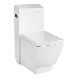 Dual Flush Elongated 1 Piece Toilet With Soft Closing Seat