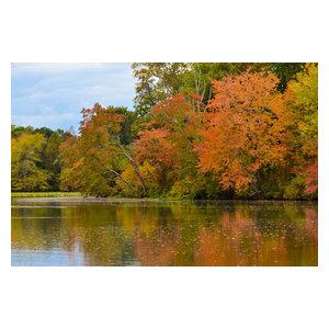 """Autumn Tree Line"" Landscape Photo, Rural Unframed Wall Art Print, 20""x24"""