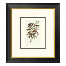 """Audubon's Warbler (decorative border)""  by John James Audubon, 18x20"""
