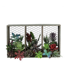 "10"" Artificial Mixed Succulents Arrangement, Chicken Wire Box Wall Decor"