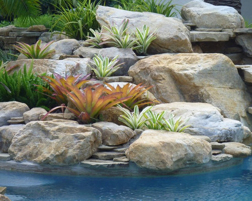 Save Waterfall Rock Work With Tropical Bromeliads
