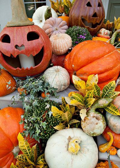Come Intagliare la Zucca di Halloween  Guida Fai da Te 4085356aeb70