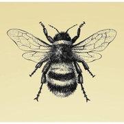 Bee Ridge Lighting's photo