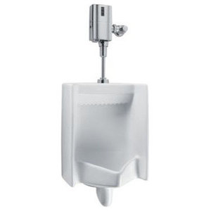 American Standard 6541 610 020 1 0gfp Ts Sys Urinal
