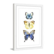 """Three Butterflies"" Framed Print by Rachel Byler"