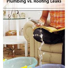 Plumbing Leaks vs. Roofing Leaks