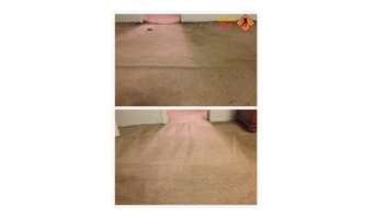 Carpet cleaning and carpet stretching Richmond