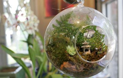 Nella Scarpa o nella Vecchia Valigia? 12 Idee per Giardini in Miniatura