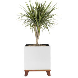 Contemporary Indoor Pots And Planters by NMN Designs