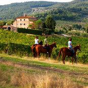 Foto di Organic Lifestyle in Tuscany