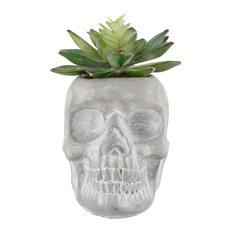 "5"" Succulent, Cement Sugar Skull, Gray, E Pack"