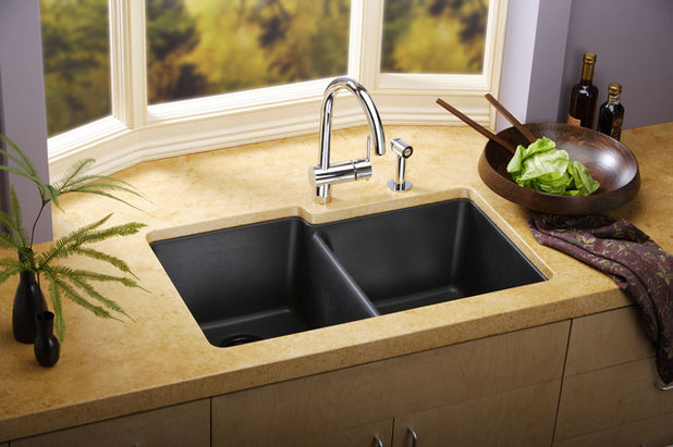 Kitchen Sinks By Elkay
