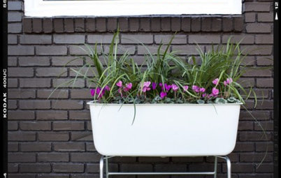 DIY Project: Mobile Container Garden