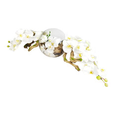 """Phalaenopsis Orchid With Natural Wood in 10"""" Open Orb Vase, White"""