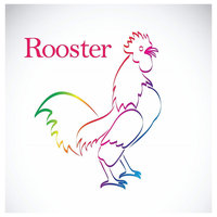 """Rainbow Rooster Canvas Print, 10""""x10"""""""