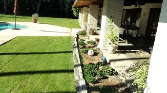 Backyard Design & Tansformation