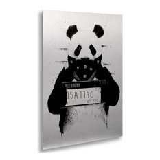 Balazs Solti 'Bad Panda' Floating Brushed Aluminum Art