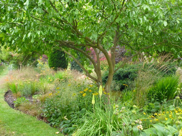 a beginners guide to adding trees to your garden - Garden Design Trees