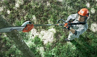 Electric Pole Saw