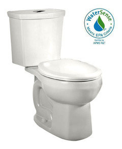 Wall Mounted Toilet Yes Or No