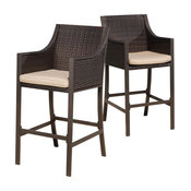 GDF Studio Rani Brown Outdoor Bar Stools, Set of 2