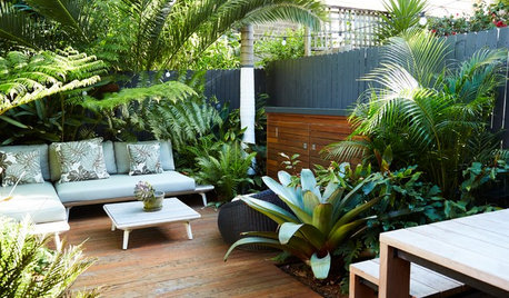 Room of the Week: A Lush, Tropical Garden That Has it All