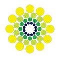 American Solar Corp.'s profile photo