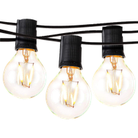 Brightech Ambience Pro - Globe, Waterproof LED Outdoor String Lights 24ft, Black