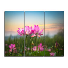 """""""Blooming Lotus Flowers at Sunset"""" Photo Canvas Print, 3 Panels, 36""""x28"""""""