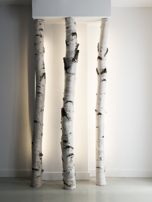 birch trees ideas pictures remodel and decor. Black Bedroom Furniture Sets. Home Design Ideas