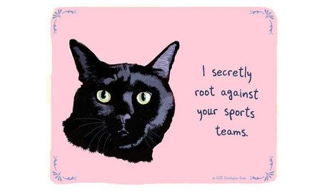 Guest Picks: Heed Your Animal Instinct