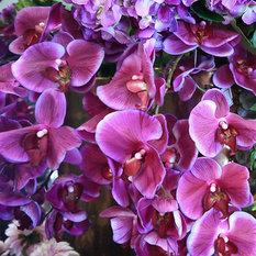 Sia silk flowers uk images flower decoration ideas sia silk flowers uk image collections flower decoration ideas sia silk flowers uk gallery flower decoration mightylinksfo Image collections