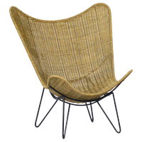 Rattan and Iron Scoop Chair