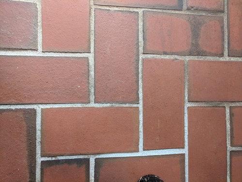 Help Indoor Brick Floors Can I Bleach The Mortar